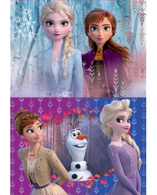 Puzzle Educa - Frozen 2, 2x20 piese (18109)
