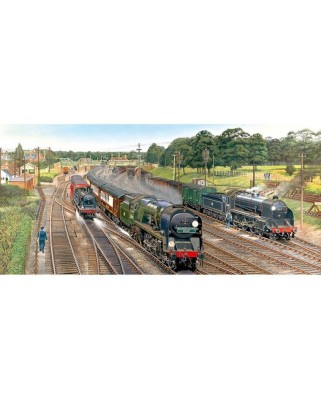 Puzzle panoramic Gibsons - New Forest Junction, 636 piese (11205)