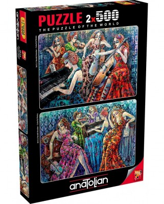 Puzzle Anatolian - Derya Yildiz: Colorful Notes, 2x500 piese (3612)