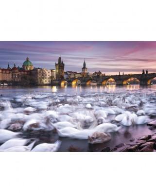 Puzzle Schmidt - Prague - Swans, 1000 piese (59695)