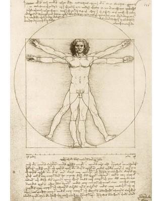 Puzzle Bluebird - Leonardo Da Vinci: The Vitruvian Man, 1490, 1.000 piese (60009)