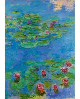 Puzzle Bluebird - Claude Monet: Water Lilies, 1917, 1000 piese (60062)