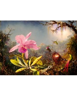 Puzzle 1000 piese - Martin Johnson Heade: Cattleya Orchid and Three Hummingbirds, 1871 (Art-by-Bluebird-60097)