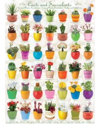 Puzzle Eurographics - Cactus & Succulents, 1000 piese (6000-0654)