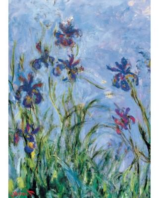 Puzzle Eurographics - Claude Monet: Iris (Detail), 1.000 piese (6000-2034)