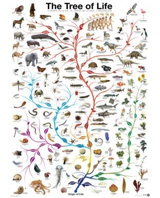 Puzzle Eurographics - Die Evolution - Der Baum des Lebens, 1.000 piese (6000-0282)