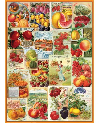 Puzzle Eurographics - Fruits Seed Catalogue, 1.000 piese (6000-0818)