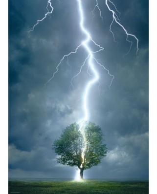 Puzzle Eurographics - Lightning striking a tree, 1.000 piese (6000-4570)