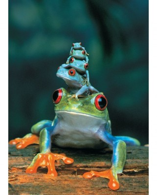 Puzzle Eurographics - Red-Eyed Tree Frog, 1.000 piese (6000-3004)