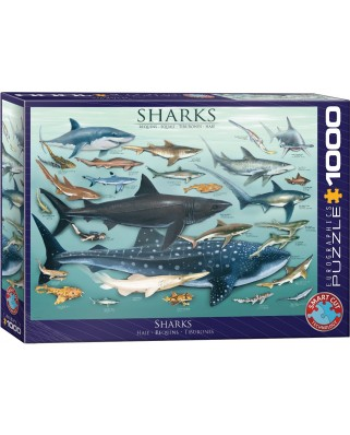Puzzle Eurographics - Sharks, 1000 piese (6000-0079)