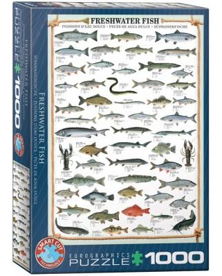 Puzzle Eurographics - Susswasserfische, 1000 piese (6000-0312)