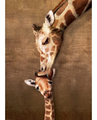 Puzzle Eurographics - The mother Giraffe and its girafon, 1.000 piese (6000-0301)