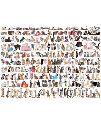 Puzzle Eurographics - The World of Cats, 1.000 piese (6000-0580)