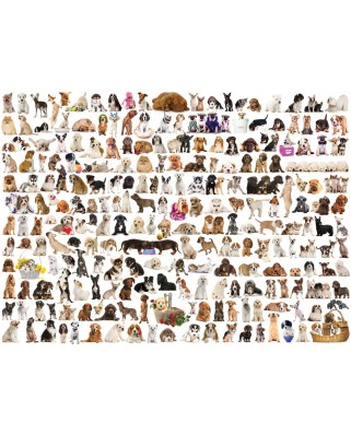 Puzzle Eurographics - The World of Dogs, 1.000 piese (6000-0581)