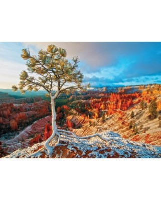 Puzzle Eurographics - Winter Sunrise, 1.000 piese (6000-0692)