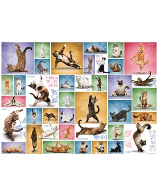 Puzzle Eurographics - Yoga Cats, 1.000 piese (6000-0953)