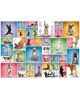 Puzzle Eurographics - Yoga Dogs, 1000 piese (6000-0954)