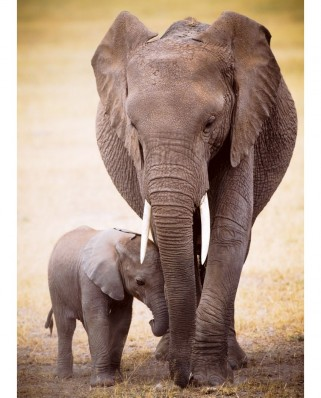 Puzzle Eurographics - The Elephant and baby elephant, 1.000 piese (6000-0270)