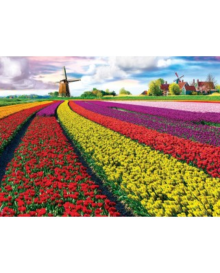 Puzzle Eurographics - Tulip Fields Netherlands, 1.000 piese (6000-5326)