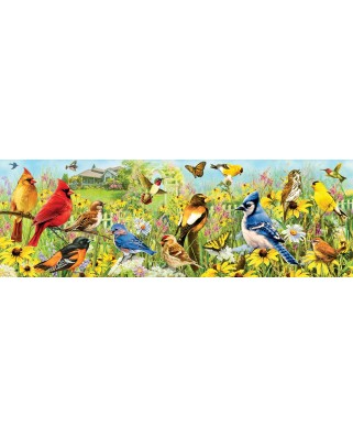 Puzzle panoramic Eurographics - Garden Birds, 1000 piese (6010-5338)