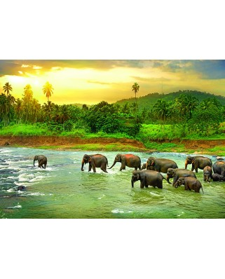 Puzzle Eurographics - Save the Planet!Animal Kingdom, 1.000 piese (6000-5540)