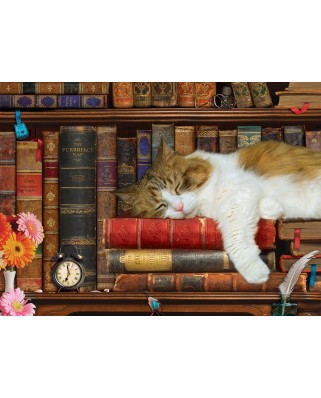 Puzzle Eurographics - The Cat Nap, 500 piese XXL (6500-5545)