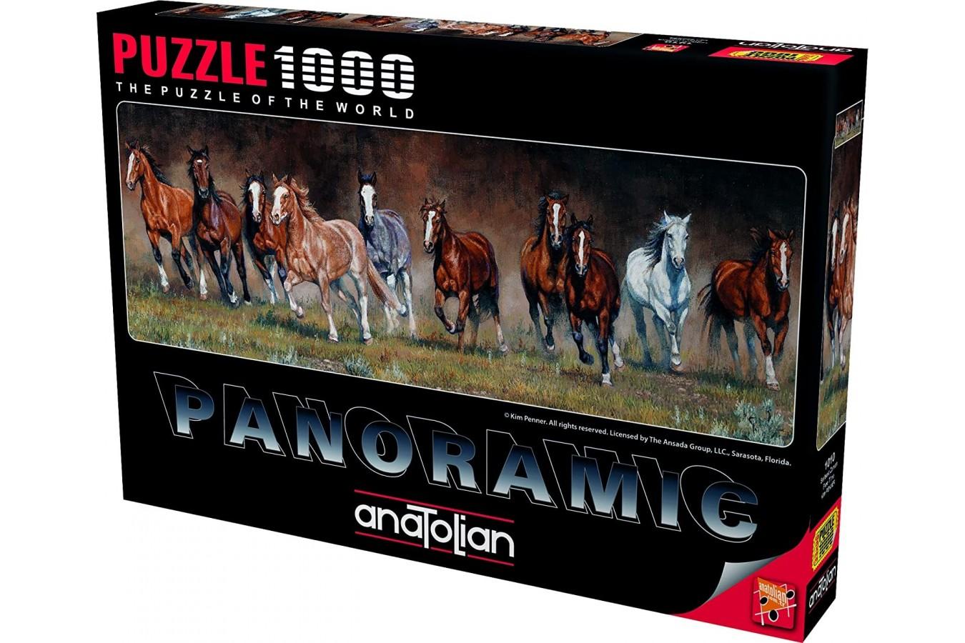 Puzzle Anatolian - Free time, 1000 piese, panoramic (1010)