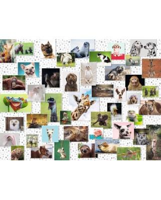 Puzzle Ravensburger - Colaj Cu Animale, 1500 piese (16711)