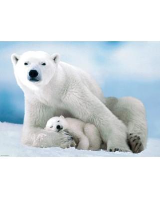 Puzzle Eurographics - Polar Bear & Baby, 1000 piese (6000-1198)