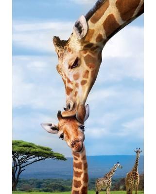Puzzle Eurographics - Giraffes, 250 piese (8251-0294)