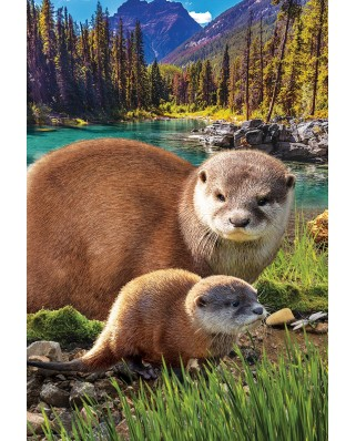 Puzzle Eurographics - Otters, 250 piese (8251-5558)