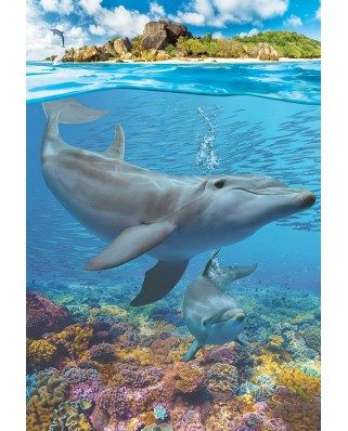 Puzzle Eurographics - Dolphins, 250 piese (8251-5560)