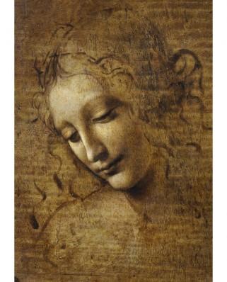 Puzzle 1000 piese - Leonardo Da Vinci: La Scapigliata, 1506-1508 (Bluebird-60117)