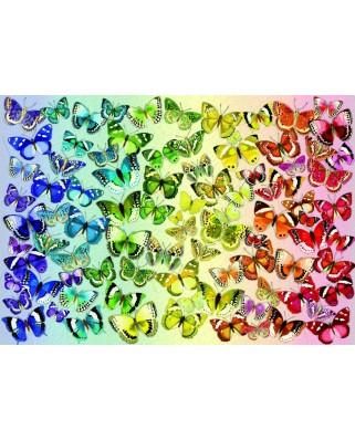 Puzzle 1000 piese - Butterflies (Bluebird-70485)