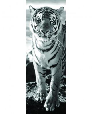 Puzzle 1000 piese panoramic - Tiger (Dino-54543)