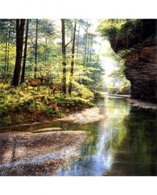 Puzzle 1000 piese - Quiet Forest (Sunsout-44720)