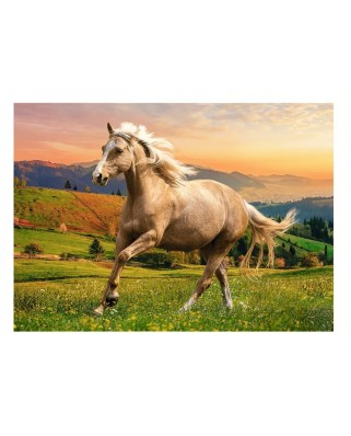Puzzle 500 piese - Afternoon Gallop in the Sun (Trefl-37396)