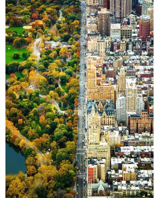 Puzzle Ravensburger - New York, 1500 Piese