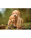 Puzzle Castorland - Puppy Love, 500 piese