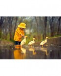 Puzzle Castorland - Rainy Day Friends, 500 piese
