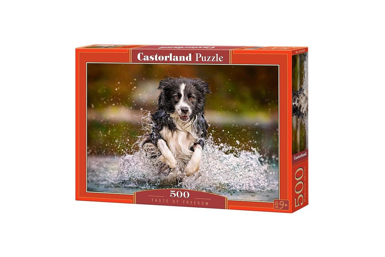 Puzzle Castorland - Taste of Freedom, 500 piese