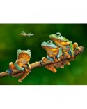 Puzzle Castorland - The Frog Companions, 500 piese