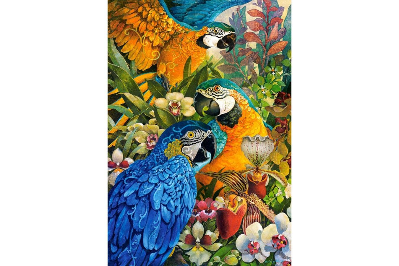 Puzzle Castorland - Amazon, 1000 piese