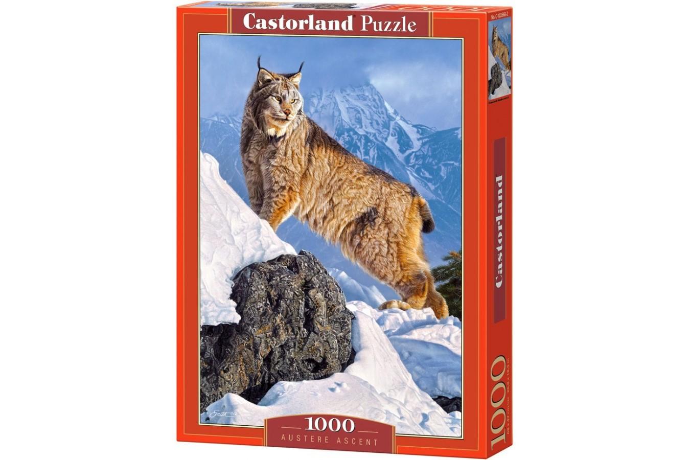 Puzzle Castorland - Austere Ascent, 1000 piese