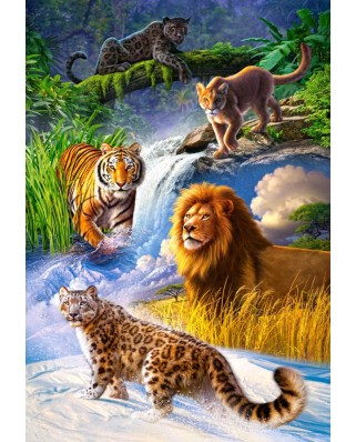Puzzle Castorland - Big Cats, 1000 piese