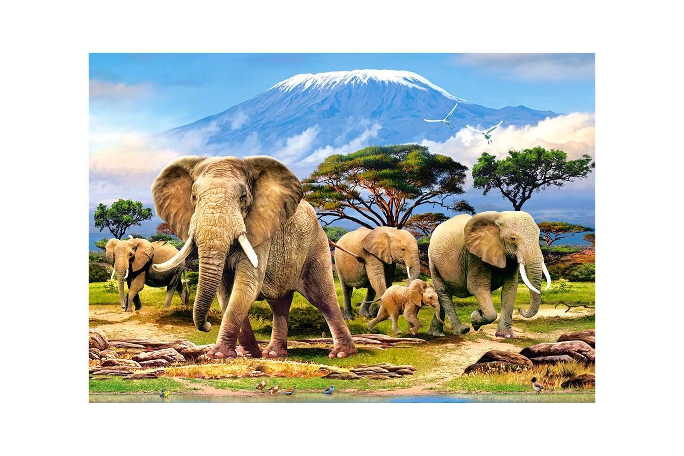 Puzzle Castorland - Kilimanjaro Morning, 1000 piese