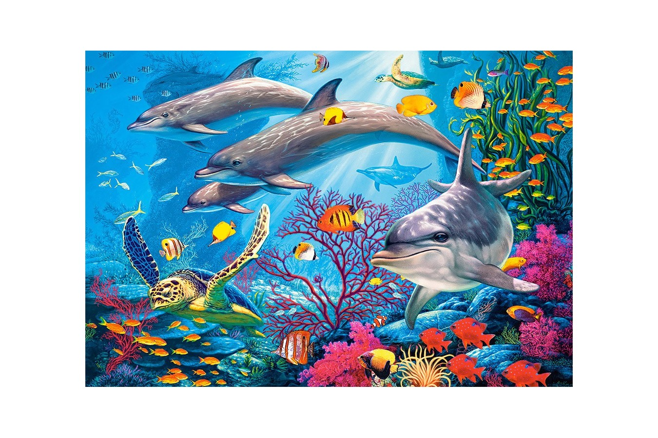 Puzzle Castorland - Secrets of the reef, 1500 piese