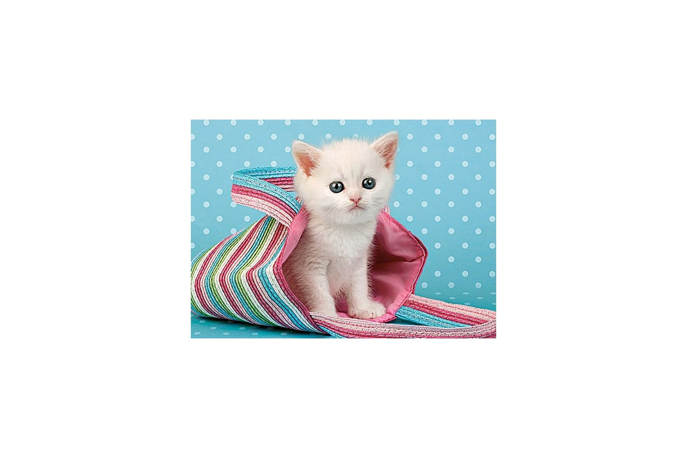 Puzzle Castorland - White Cat In Bag, 108 Piese