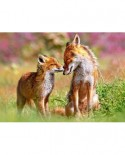 Puzzle Castorland - Little Fox And His Mums, 120 Piese
