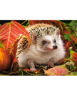 Puzzle Castorland - Hedgehog In Autumn Leaves, 180 Piese